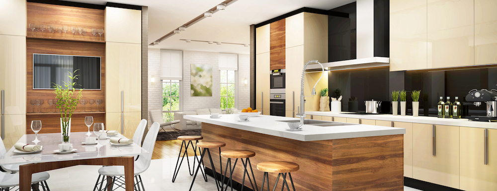 Modern Multi-Functional Space Kitchen, Dining Room and Living Room